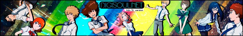 Digisoul.net